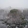 雪、雪、雪